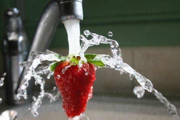 fraiserobinet.jpg